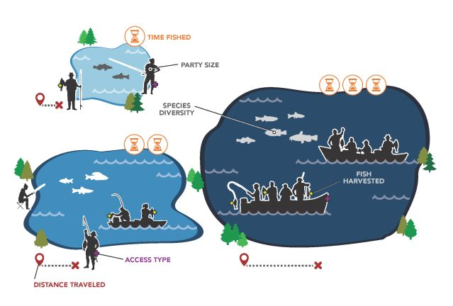 Conceptual infographic illustrating nonlinear angler behavior responses to water body size. Illustration: Jonathan Marohl