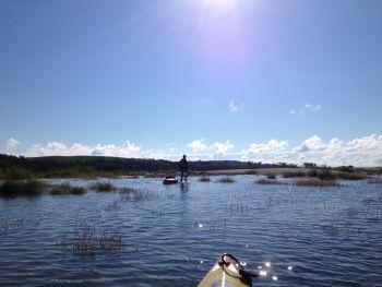 Kayaking Nebraska rivers looking for signs of otters (Photo courtesy Nathan Bieber)