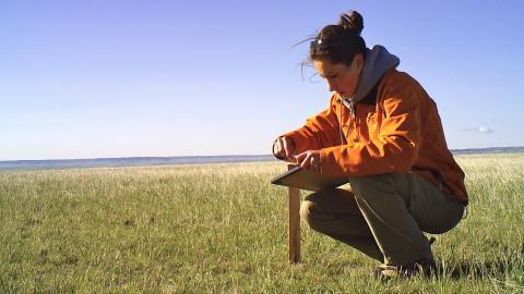Lucia preparing trail cameras. Photo: Adela Annis