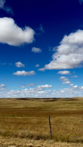 Nebraska Prairie. Photo: Hannah Birge