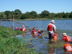 Collecting snails at Wild Plum Lake(courtesy Michelle Hellman)