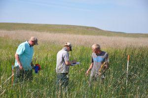 Establishing survey plots in the Sandhills (courtesy Craig Allen)